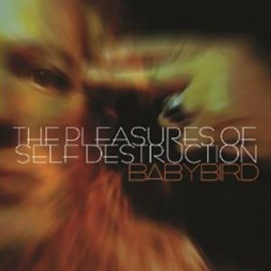 The Pleasures of Self Destruction Album