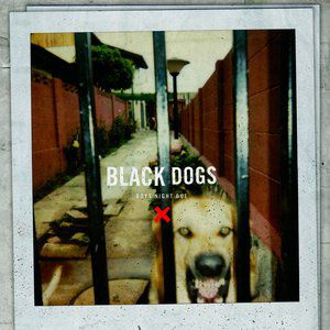 Black Dogs Album
