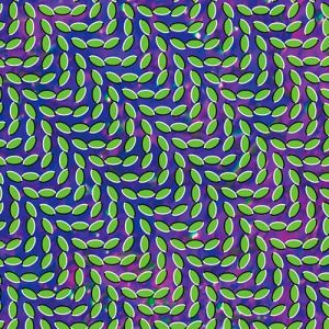 Merriweather Post Pavilion Album
