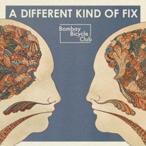 A Different Kind of Fix Album