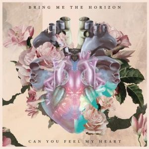Can You Feel My Heart Album
