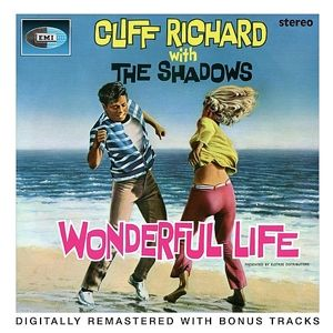 Wonderful Life Album