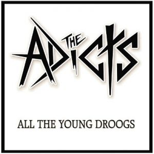 All the Young Droogs Album